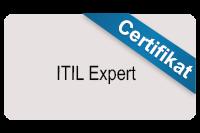 itil-expert