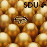 Fleksibel HD uddannelse på SDU