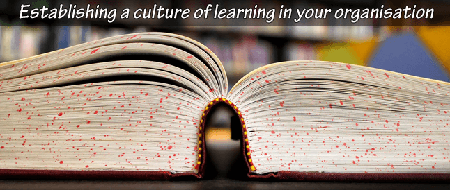 How to build a culture of learning in your organisation