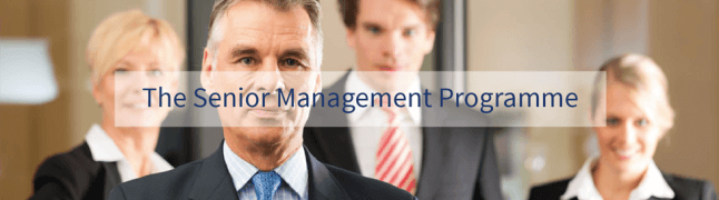 senior management programme