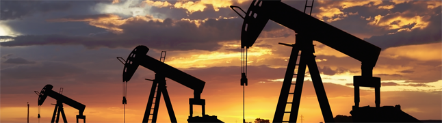 An Introduction to Upstream Petroleum Economics & Risk Analysis Course