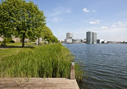 Urban dynamics bachelor