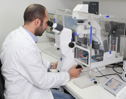 Lab work - Cyprus School of Molecular Medicine
